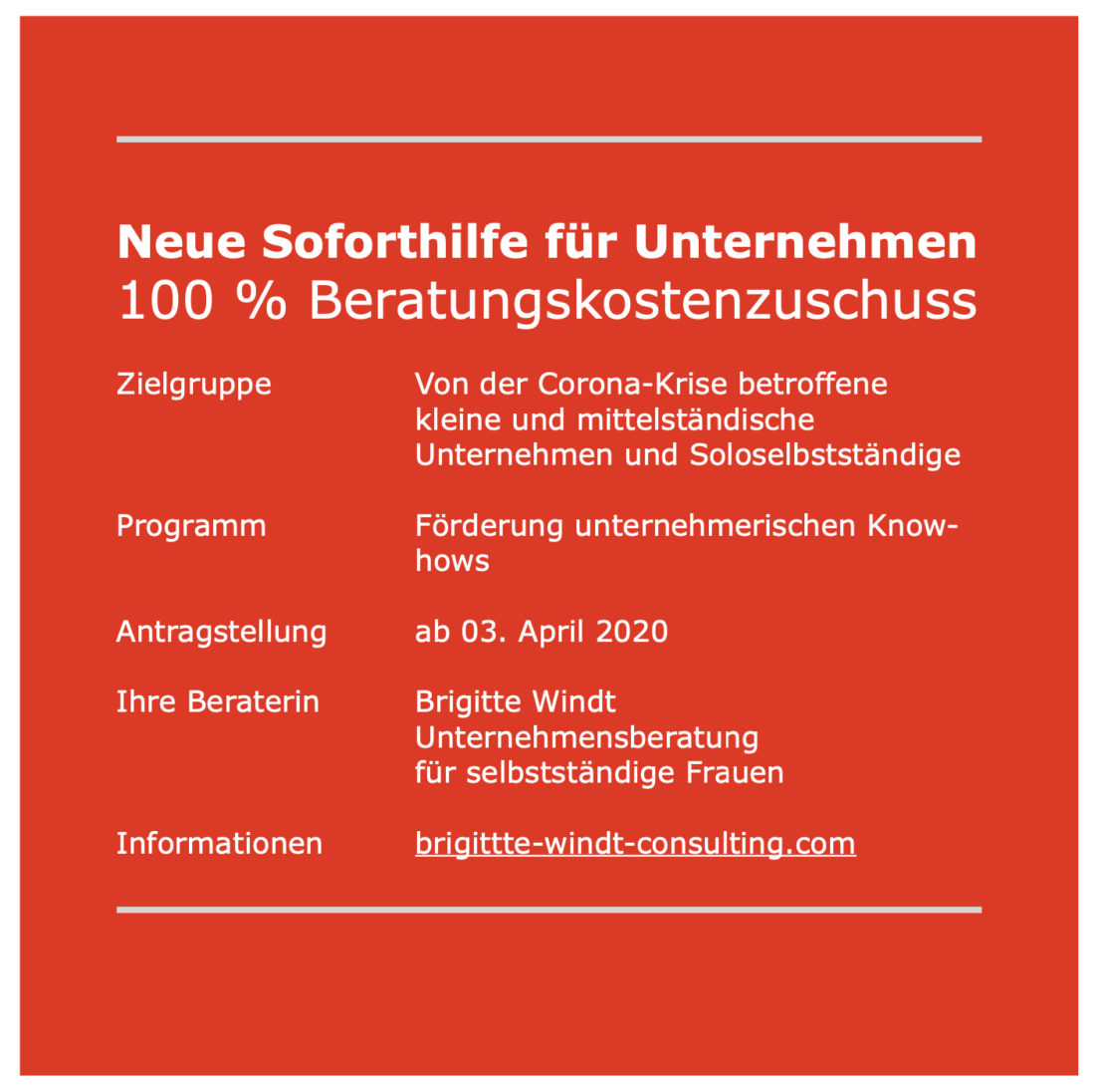 Neue Soforthilfe für Unternehmen - 100 % Beratungskostenzuschuss - brigitte windt consulting - Berlin - Unternehmensberatung für selbstständige Frauen